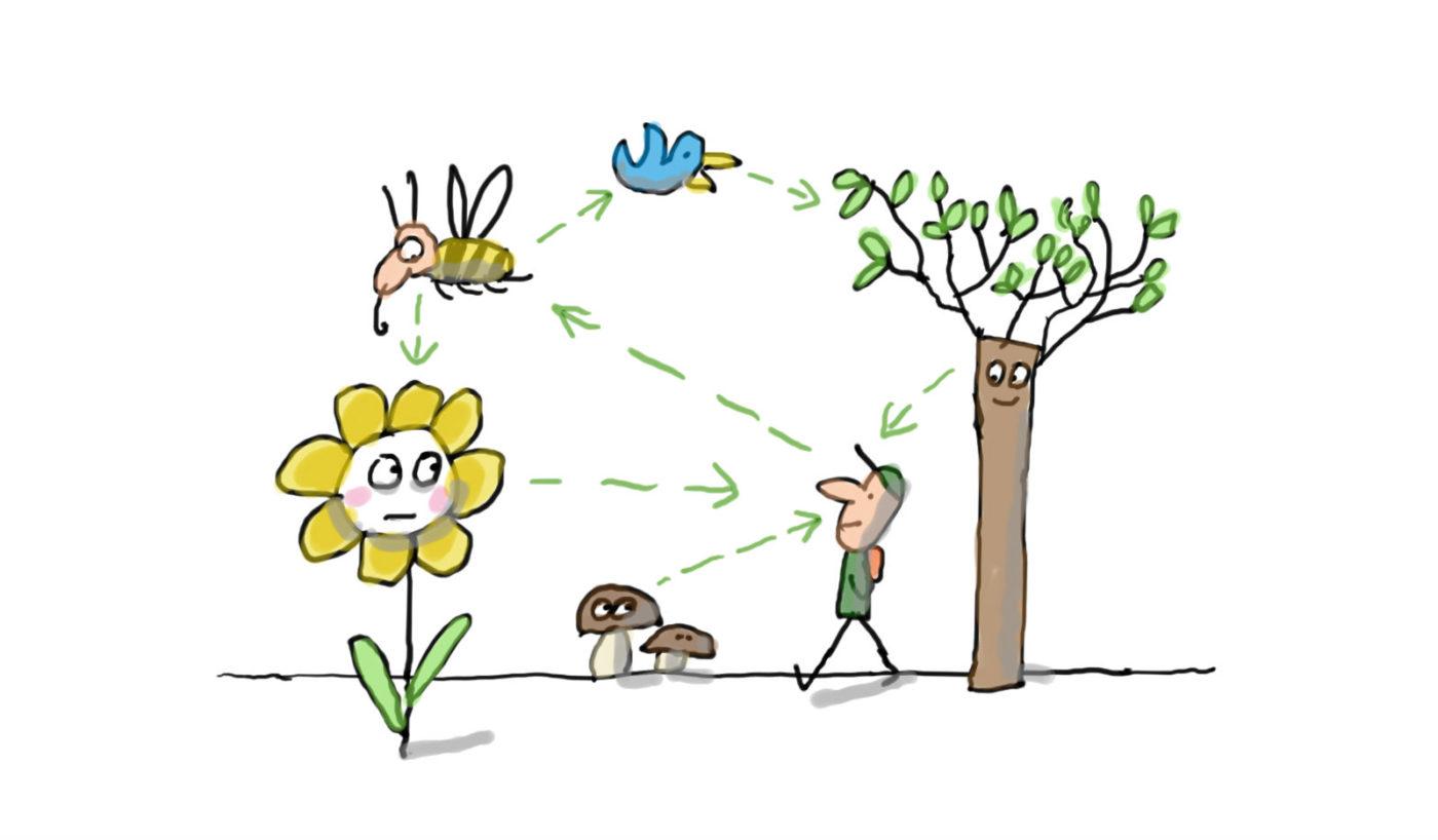 Définir la biodiversité